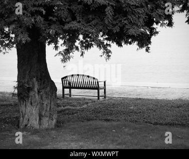 Lonely park bench in black and white - Stock Photo