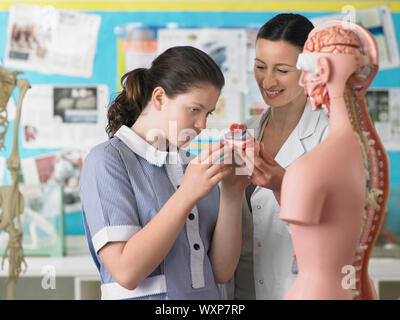 High School Student With Teacher in Biology Class - Stock Photo