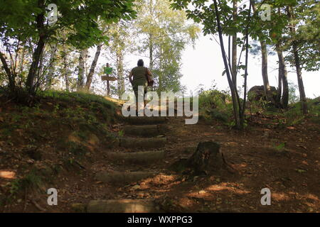 Caucsic woman climbs steps made of logs on a mountain path in the middle of a conifer forest