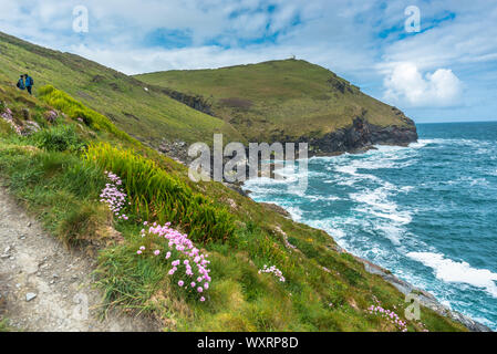 South West Coast Path from Boscastle towards Willapark Lookout in the distance, North Cornwall, England, UK. - Stock Photo