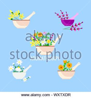 aromatherapy and alternative natural medicine, lavender herbs and chamomile and calendula in a mortar with pestle - Stock Photo