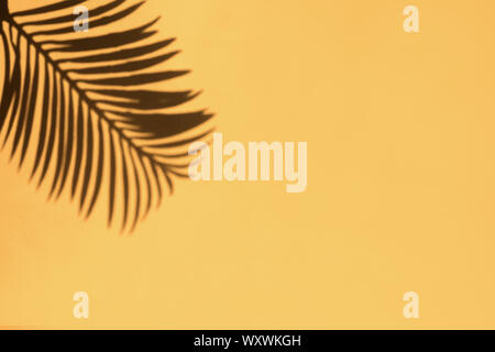Tropic palm leaf shadow on the bright yellow wall background. - Stock Photo