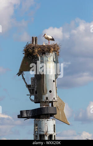White Stork (Ciconia ciconia) nest on top of scavenged plane part, Spain - Stock Photo