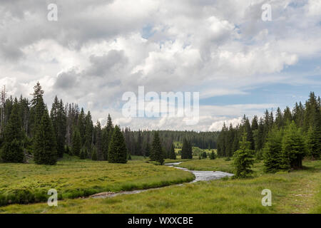 Landschaft im Boehmerwald - Stock Photo
