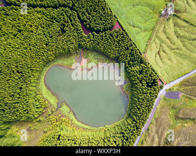Ghost shaped drone landscape. Top down aerial view of a small pond in the middle of a forest, reflecting clouds in the sky. Bird view of Canary lagoon - Stock Photo