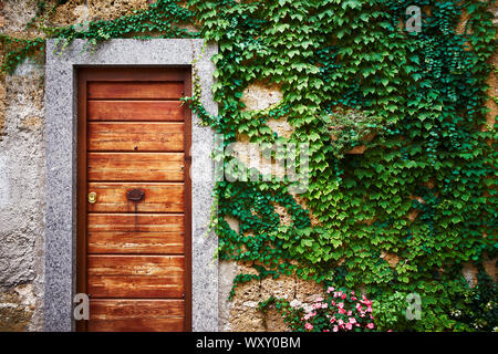 An old wooden door of an ancient stone house with walls covered with green ivy and climbing plants in Italy - Stock Photo