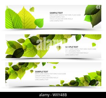 Vector Fresh spring horizontal banners with leafs and sample text - Stock Photo