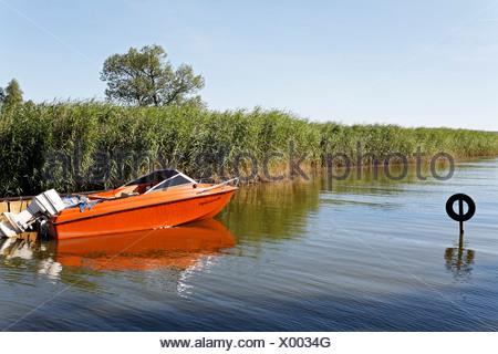 Idyllic boat harbour in the Achterwasser Bay near Warthe, Lieper Winkel, Usedom Island, Baltic Sea, Mecklenburg-Western Pomeran - Stock Photo