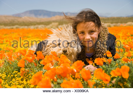 Girl Laying In Poppy Field With Dog - Stock Photo