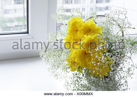 Fresh spring flowers in a vase on a window sill - Stock Photo