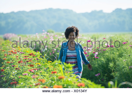 A woman standing among the flowers growing in the fields. Pink and white cosmos blooms. - Stock Photo