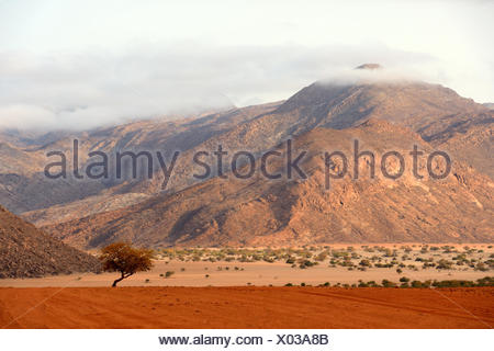 Marienfluss valley during dry season, Kaokoland, at the frontier,  the mountains are Angola, Kunene region, Namibia, Africa - Stock Photo