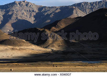 Shepherd with a dog in front of the dry brown landscape of the Himalayas at the Friendship Highways on the plateau of Tingri - Stock Photo