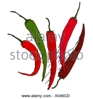 Red And Green Chili On White Background - Stock Photo