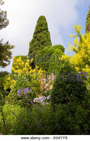 garden of the Villa Ephrussi de Rothschild, France, Saint-Jean-Cap-Ferrat - Stock Photo