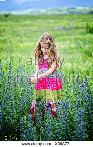 Girl picking flowers in meadow - Stock Photo