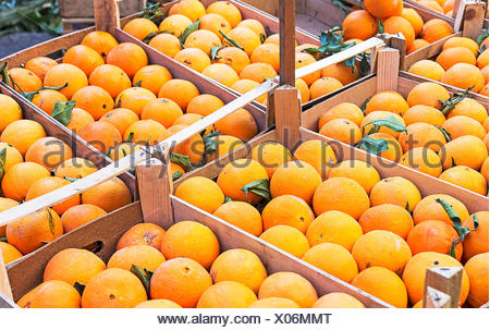 Closeup oranges on a market - Stock Photo