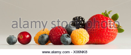 Agriculture - Mixture of berries: strawberry, red and golden raspberries, blackberry, blueberries and cranberry, on white. - Stock Photo