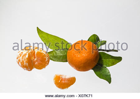Frisch gepflückte Mandarinen mit Laub - Stock Photo