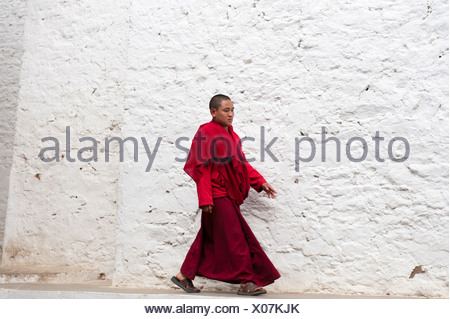 Tibetan Buddhism, monk in a red robe walking in front of a white wall, Tango Goemba Monastery, near Thimphu, the Himalayas - Stock Photo