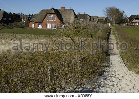 Friesian Houses in the Dunes - Stock Photo