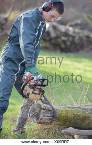 Man chainsawing through tree trunk - Stock Photo