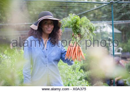 Woman holding up carrots from allotment - Stock Photo