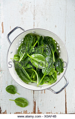 Young spinach in colander - Stock Photo