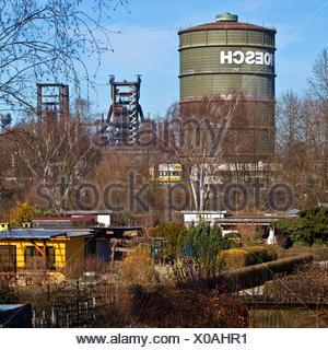 allotment gardens in front of Gasometer and blast furnace Phoenix West, Germany, North Rhine-Westphalia, Ruhr Area, Dortmund - Stock Photo