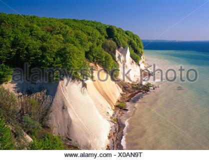 Chalk cliffs on the coast, Jasmund National Park, Ruegen, Mecklenburg-Western Pomerania, Germany, Europe - Stock Photo