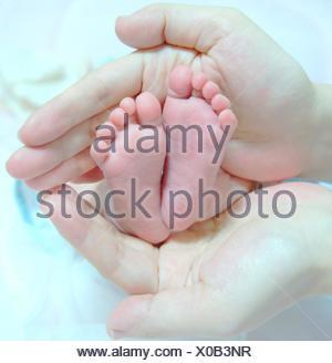 Hands Holding Baby Feet - Stock Photo