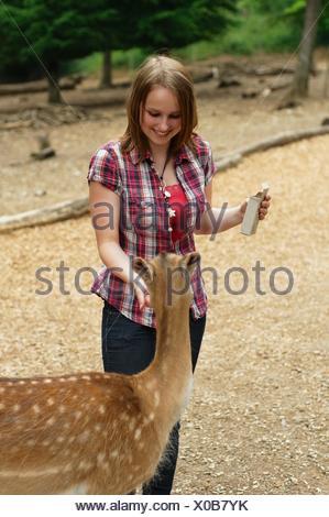 Frau füttert ein junges Reh im Wald - Stock Photo