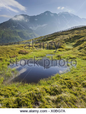 View from Oberberg (mountain) against Hochfeiler (mountain), 3510 m, mountain lake, Pfitsch valley, South Tirol, Italy, - Stock Photo