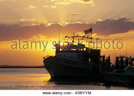 Cumberland Island tour boat sunrise, Cumberland Island National Seashore, St Marys, Georgia. - Stock Photo