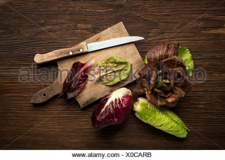 Radicchio Salad - Stock Photo