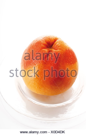 Grapefruit  (Citrus paradisi) on plate, elevated view - Stock Photo