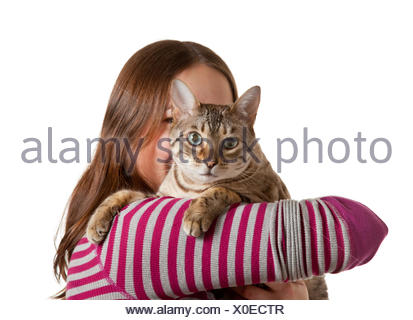 Bengal kitten on arm of young girl facing camera - Stock Photo