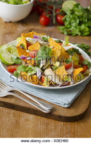 Spicy chicken, mango and jalapeno salad with tortilla crisps. - Stock Photo