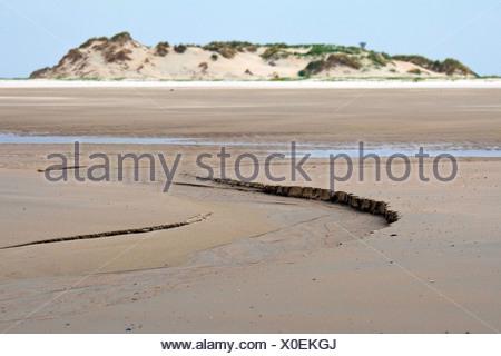 beach, Germany, Lower Saxony, Norderney - Stock Photo