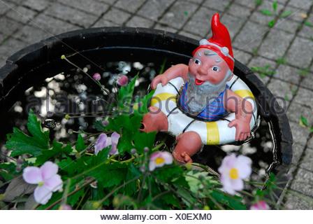Bathing garden gnome in trough - Stock Photo