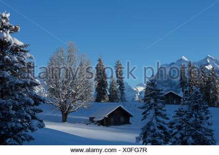alp huts in Hasliberg, - Stock Photo