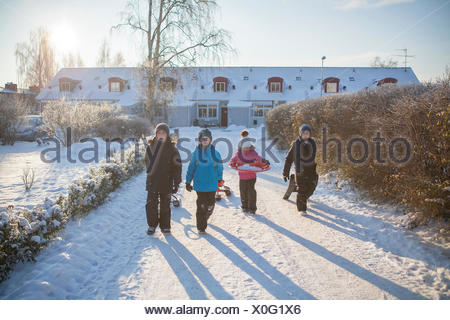 Portrait of three boys (10-11) and girl (8-9) walking along snowy driveway, dragging sleds - Stock Photo