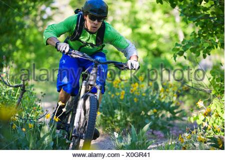 A man, mountain biking on the Scott's Lake trail in South Lake Tahoe, CA. - Stock Photo