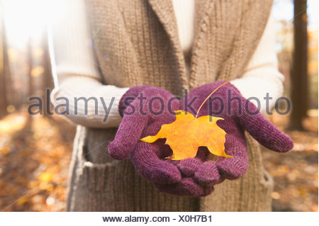 USA, New Jersey, Woman holding leaves in Autumn forest, mid section - Stock Photo