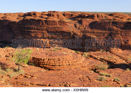 Sandstone formations, Kings Canyon Rim Walk, Watarrka National Park, Northern Territory, Australia - Stock Photo