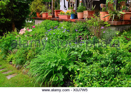 garten blumenbeet dahlien blumen stock photo 157047085 alamy. Black Bedroom Furniture Sets. Home Design Ideas