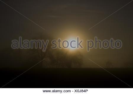 Evening dusk,  Höri, Lake constance - Stock Photo