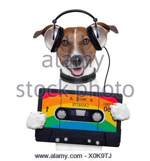 music cassette tape headphone dog - Stock Photo