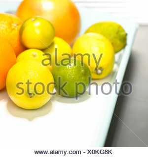 Citrus fruits on tray, close-up - Stock Photo