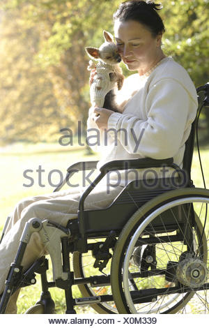 Woman sits in the invalid's wheel chair,small dog on the lap, - Stock Photo